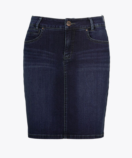 Mid-Wash Seamed Denim Skirt, Mid Wash, hi-res