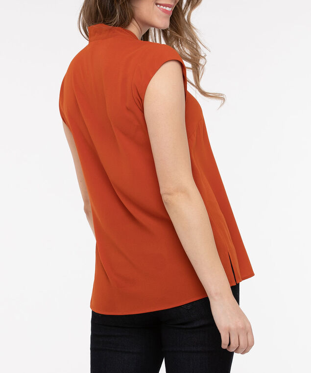 Extended Sleeve Tie V-Neck Blouse, Pumpkin, hi-res